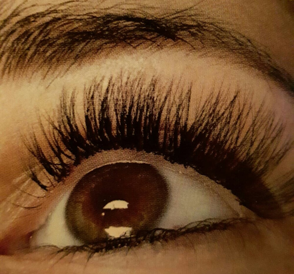 The House Of Lashes Kitchener On