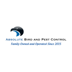 Absolute Bird and Pest Control