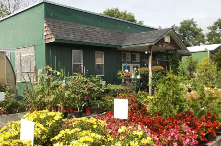 Peters Nursery & Garden Store: 5587 Harrison Ave, Cincinnati, OH