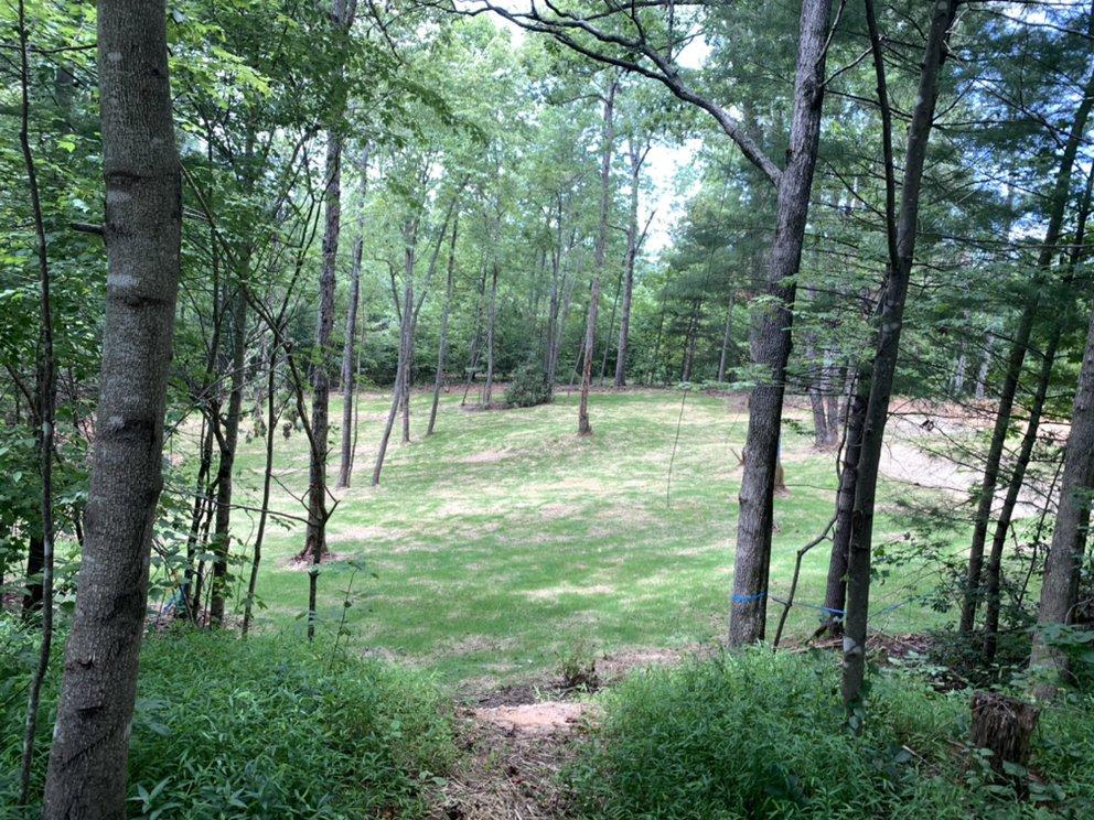 Backyard Landscapes: Blythewood, SC