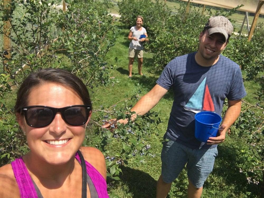 New Leaf Farms: 7097 Allyn Rd, Garrettsville, OH