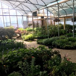 Photo Of Twin Pines Nursery Sandy Ut United States Greenhouse Interior