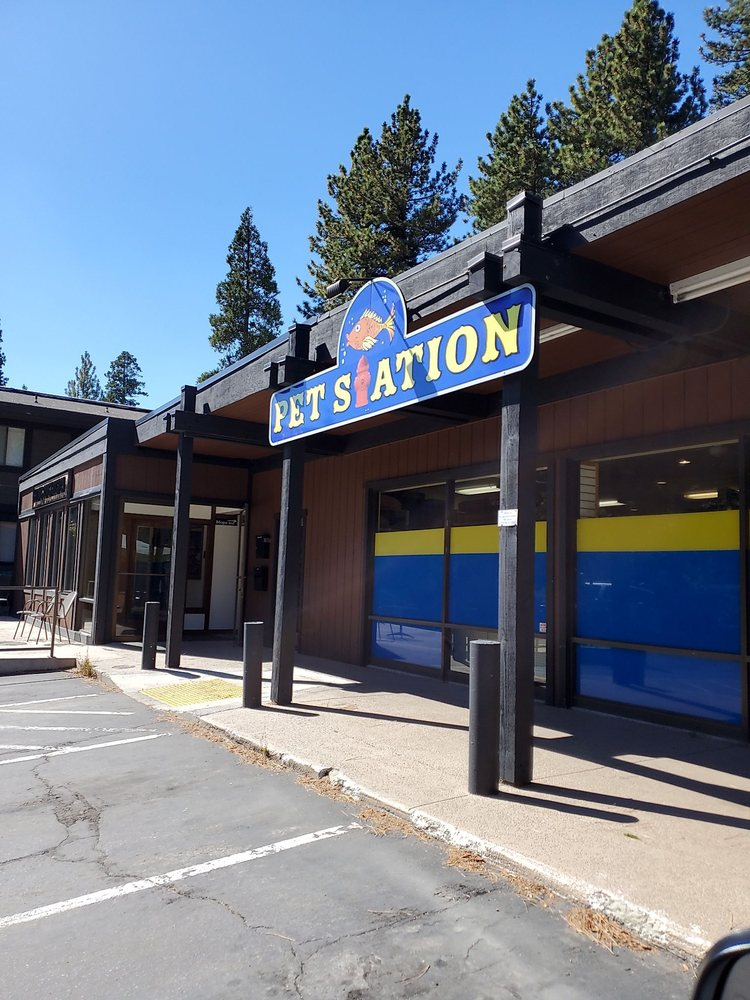 Pet Station: 585 W Lake Blvd, Sunnyside-Tahoe City, CA