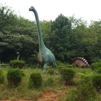 Dinosaur World 104 Photos 60 Reviews Museums 711