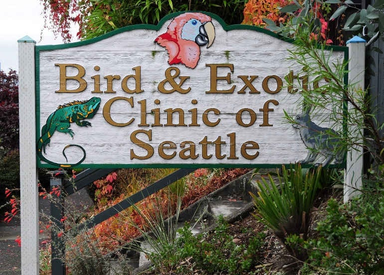 Bird & Exotic Clinic of Seattle