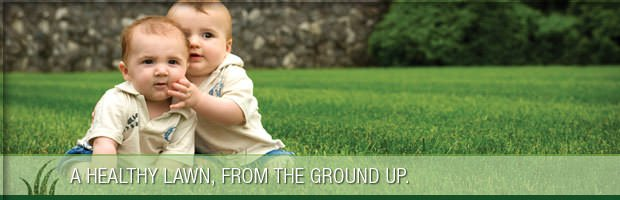 Greener Grass Organic Lawn Care: 719 Cook Ave SW, Canton, OH