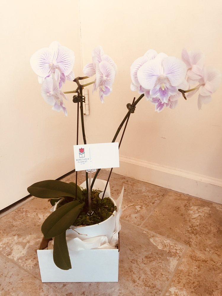 Beretania Florist