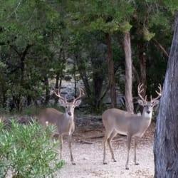 Something is. erotic massage in deer park texas