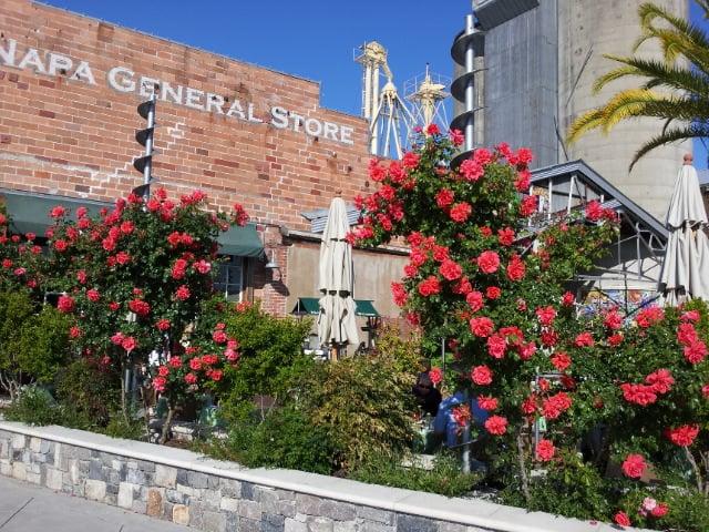 Napa General Store