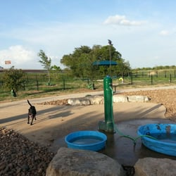 Top Dog Parks in San Antonio, TX - Wag!