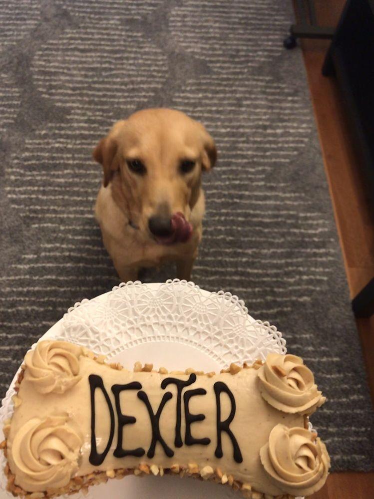 Three Dog Bakery Houston: 2402 Rice Blvd, Houston, TX