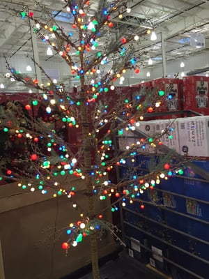 Costco Wholesale 1085 Hanes Mall Blvd Winston Salem Nc Retail Shops