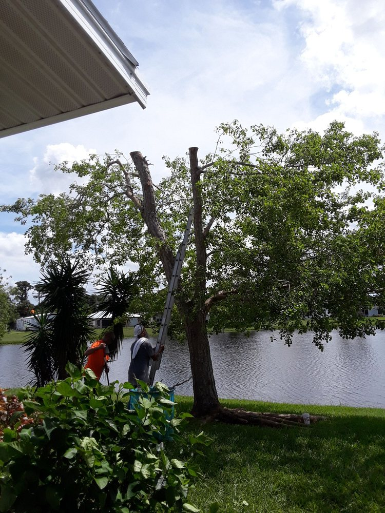 Chaves Environmental Management: 7007 Roberts Rd, Fort Pierce, FL