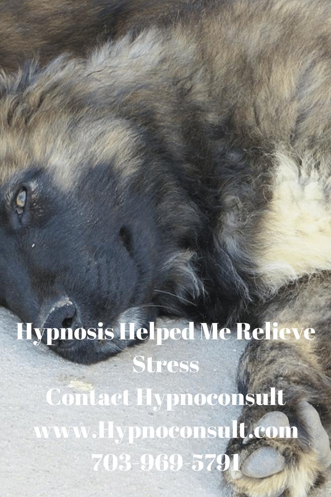 Hypnoconsult: 9255 Center St, Manassas, VA