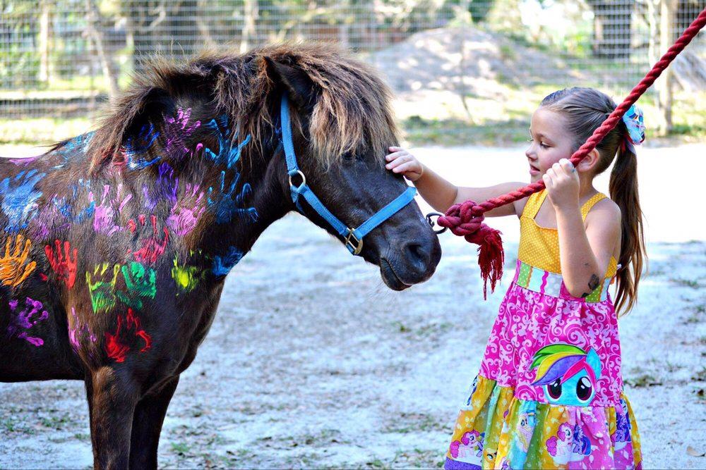 Little Hands Ranch: Lakeland, FL