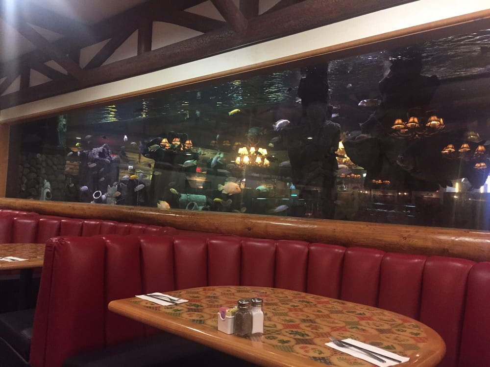 Fish tank at casino buffet yelp for Fish buffet near me