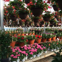 Photo Of Village Green Nursery Rockford Il United States