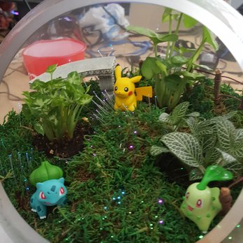 Photo Of Fairy Garden Mother   Marietta, GA, United States. Pokemon  Terrarium!