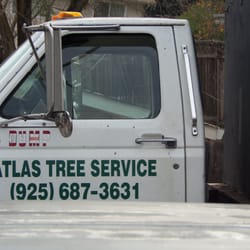 Photo Of Atlas Tree Service Concord Ca United States Serive