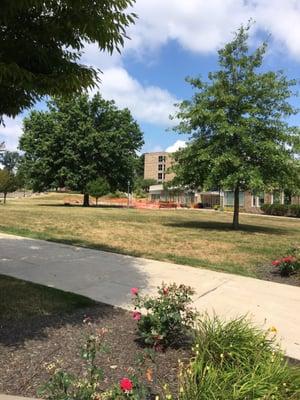 Misericordia University 301 Lake St Dallas Pa Colleges