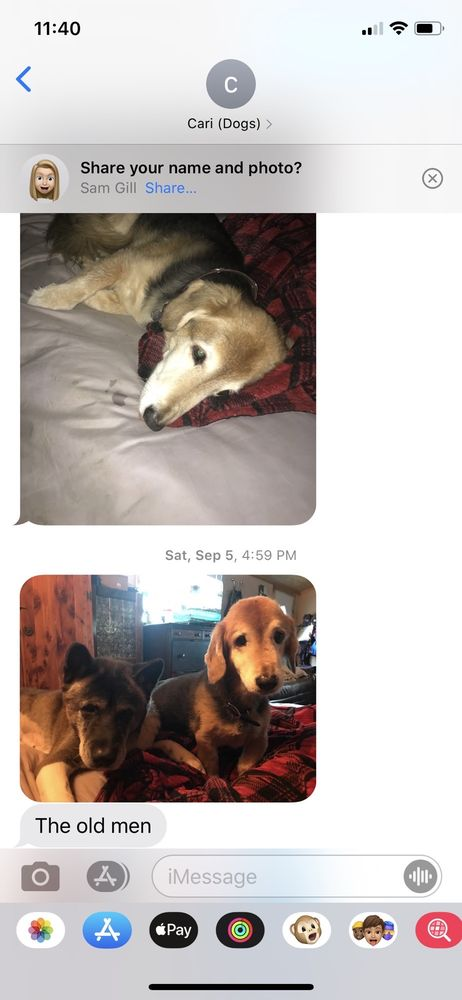 Cari's Pet Service: Damon, TX