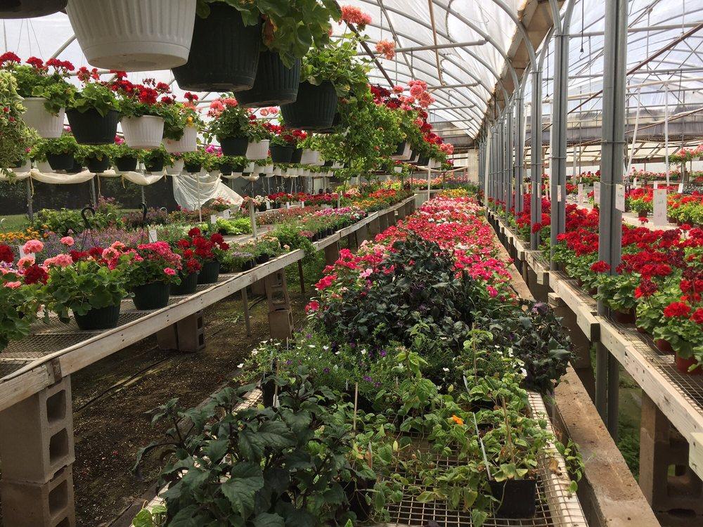 Benton S Greenhouse Garden Centres 209 S Valley Pride Rd Hutchinson Ks United States