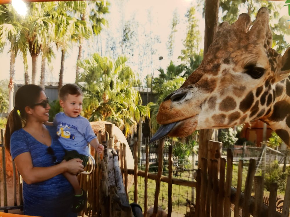 Social Spots from ZooTampa at Lowry Park