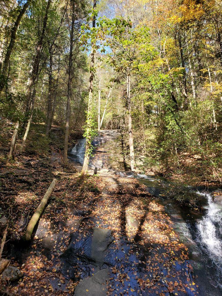Fall Branch Falls: 3000 Rock Creek Rd, Cherry Log, GA