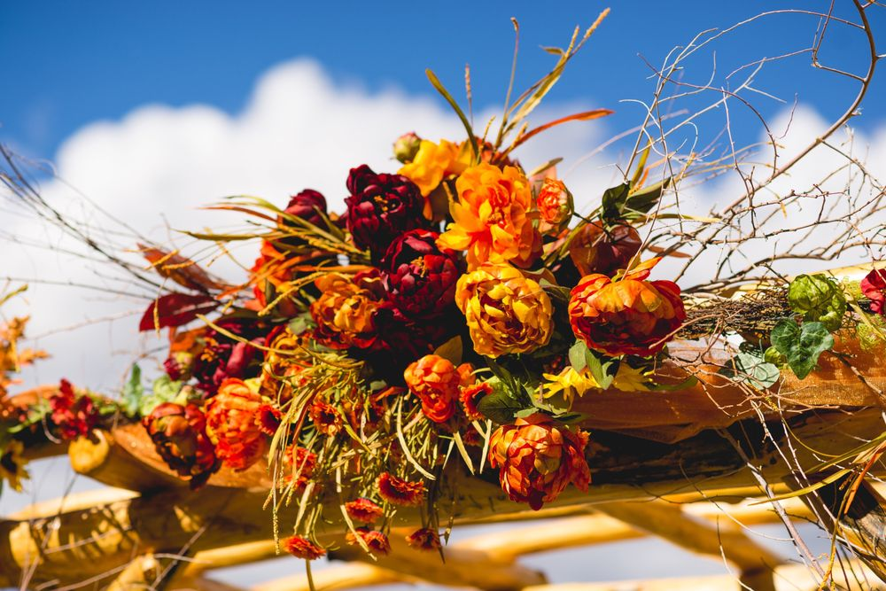 The Flower Pot & Garden Center: 117 E 20th St, Pueblo, CO