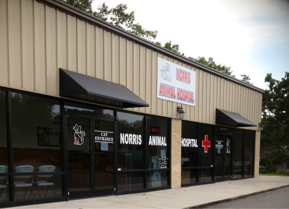 Norris Veterinary Animal Hospital: 2683 Andersonville Hwy, Clinton, TN