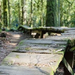 6ab9e898533 Duthie Hill Park - Parks - 20 Photos & 27 Reviews - 27101 Duthie ...