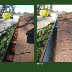 Ace Gutter Cleaning Gutter Services Palo Alto Ca