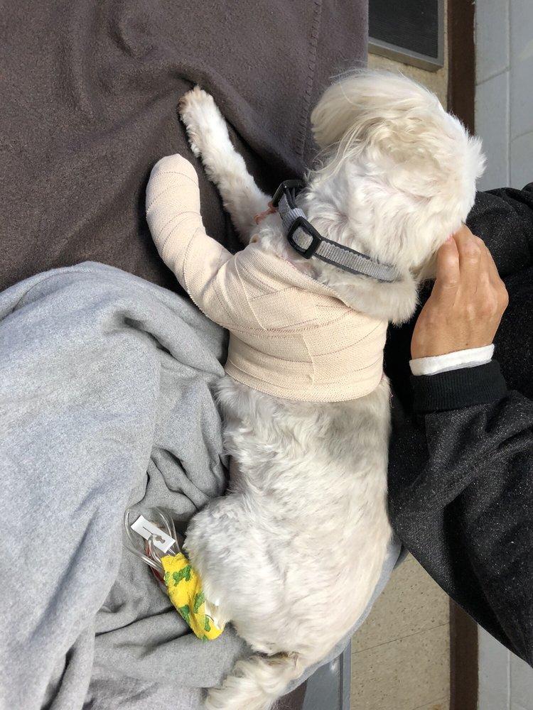 West Covina Pet Hospital - 18 Photos & 48 Reviews - Veterinarians ...