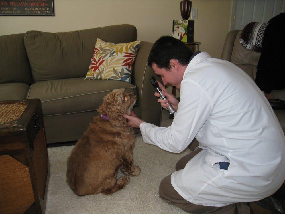 Compassionate Care Mobile Veterinary Service: Shawnee Mission, KS