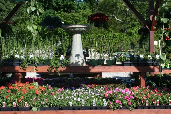 The Garden Center at Sepers Nursery - Nurseries & Gardening - 1114 W ...