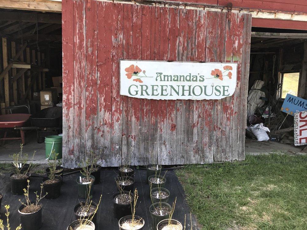 Amanda's Greenhouse: 185 VT Route 215, Cabot, VT