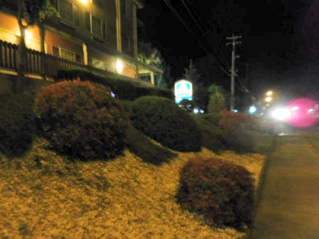 Best Western Willits Inn: 1777 S Main St, Willits, CA