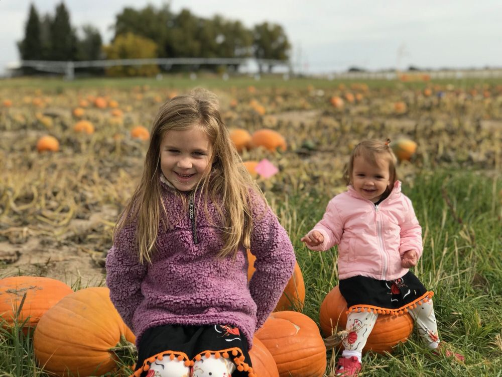 New Sweden Farms corn maze & pumpkin patch: 3512 W 17th S, Idaho Falls, ID