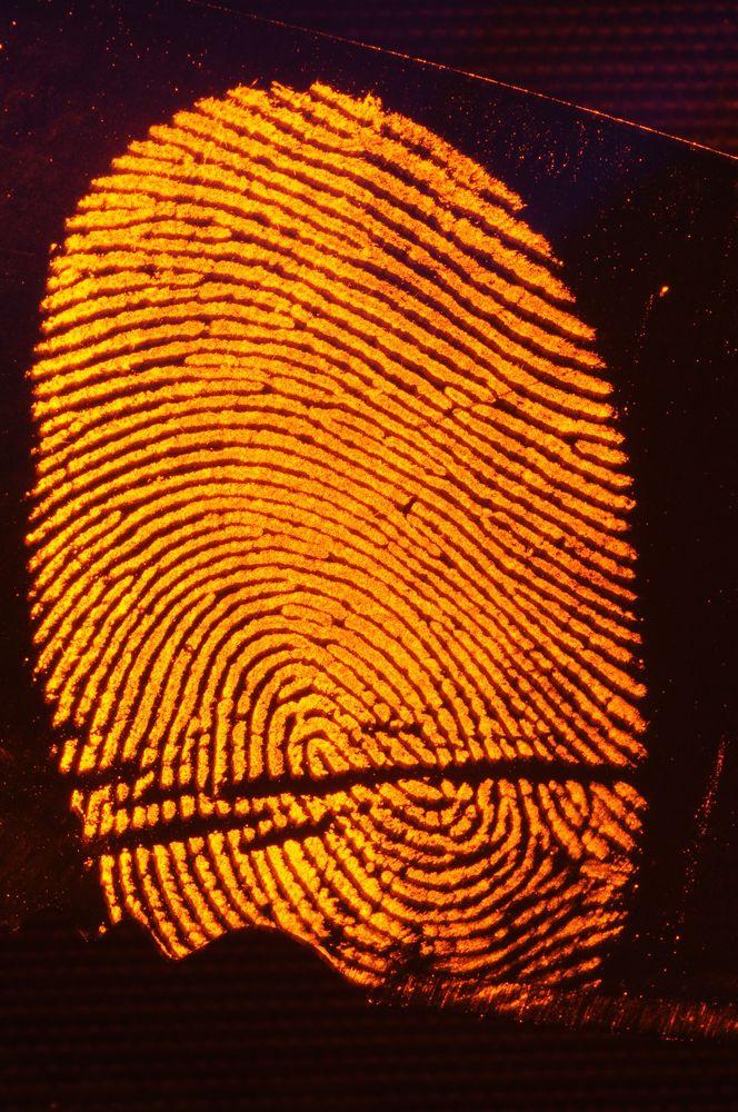 T.R.A.C.E. Investigations: 1818 W Francis Ave, Spokane, WA