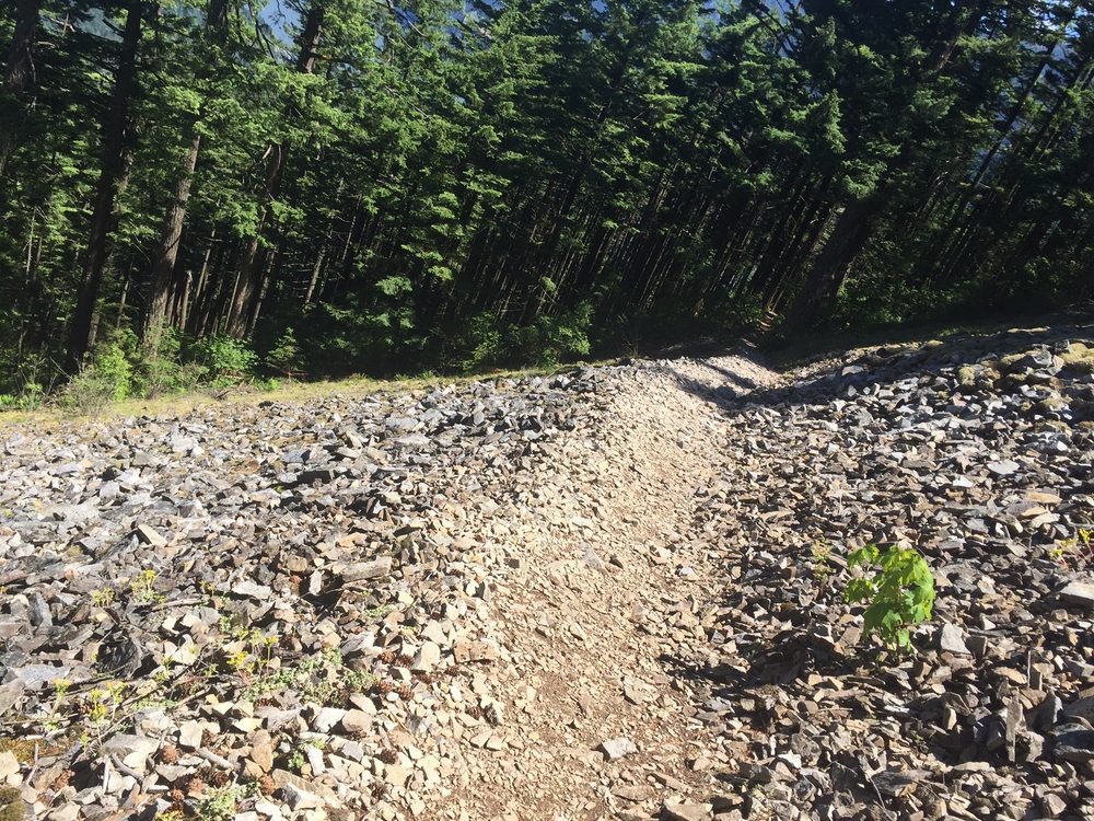 Wind Mountain Trailhead: Wind Mountain Trail, Stevenson, WA