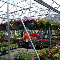 Photo Of Pike Nurseries Marietta Ga United States A Great Nursery With