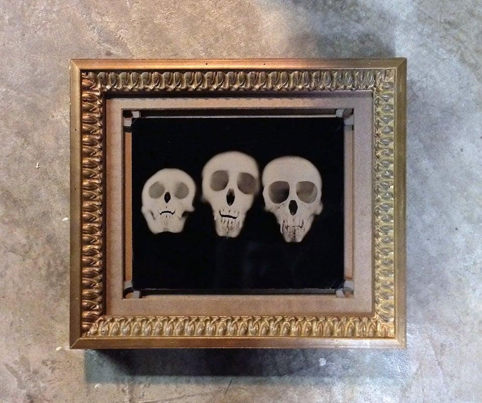 Monkey skulls (Wet Plate Photo by Barry Schmetter) Framed by Design ...