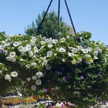 Photo Of Magic Garden   Tucson, AZ, United States. Thank You Again Magic