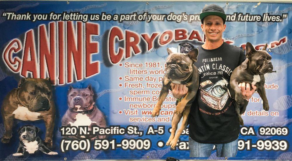 Canine Cryobank