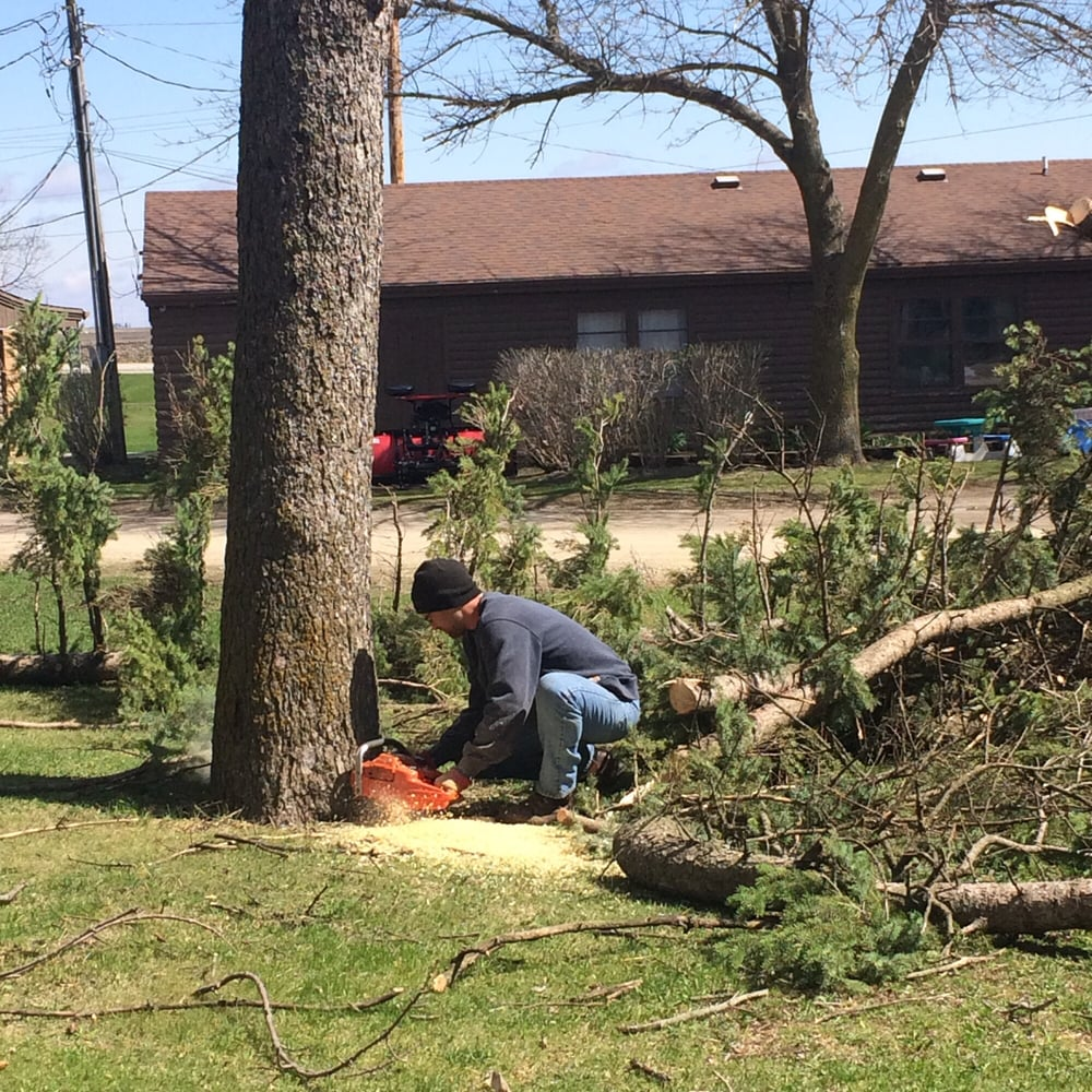 Southern Oaks Tree & Crane Service: Iowa Falls, IA