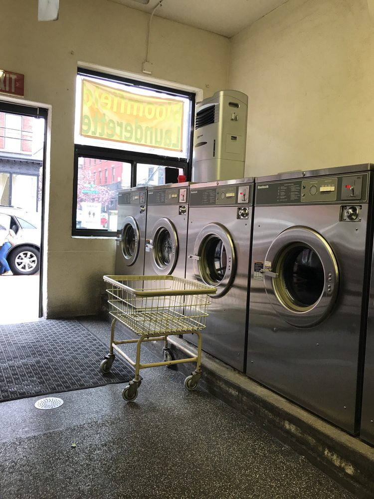 Bed Bug Laundry Service Nyc