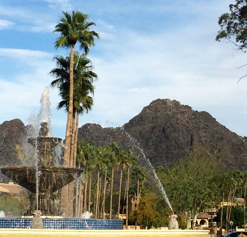 Peace Wellness Center: 7600 N 15th St, Phoenix, AZ