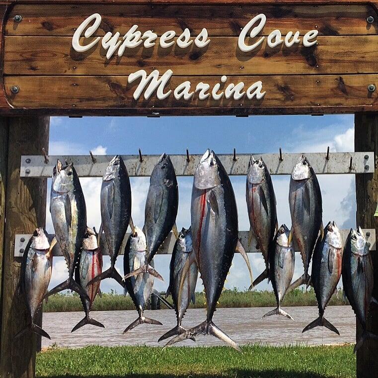 Osprey Charters: 237 Sports Marina Rd, Venice, LA