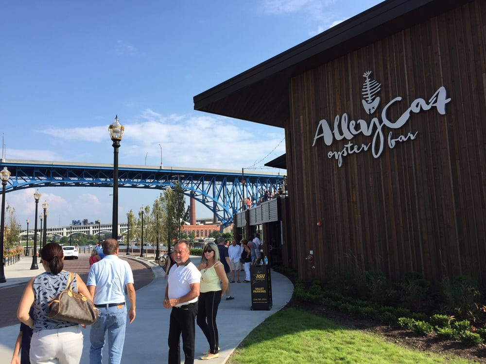Alley cat oyster bar 186 photos 194 reviews american for Old florida fish house menu