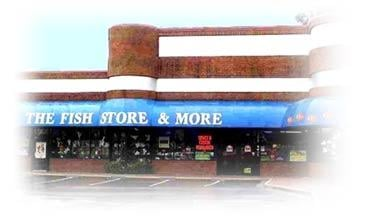Fish store more closed pet shops 3145 peachtree rd for Fish and more pet store